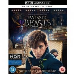 Fantastic Beasts Película...